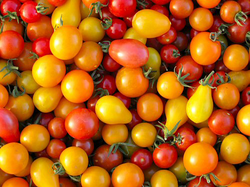 productimage-picture-patio-tomato-mix-336.png